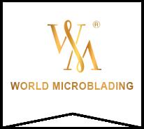 Atlanta Landing Page - World Microblading